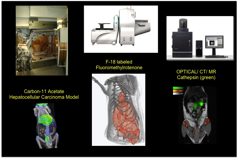 brain imaging technologies in research of New technologies early intervention  a detailed brain imaging study published march 14 in the journal translational psychiatry  the brain & behavior research.