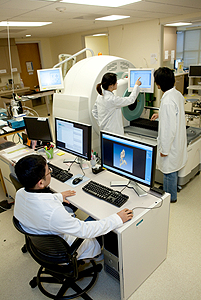 Radiology research