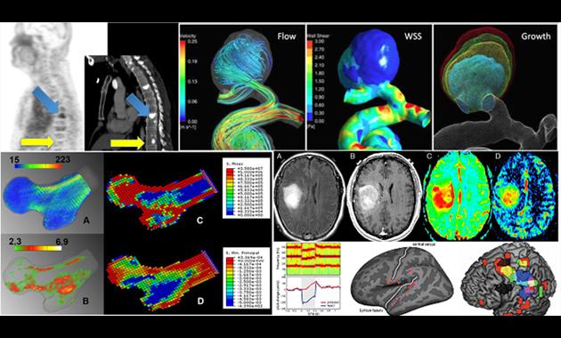 master of science in biomedical imaging degree