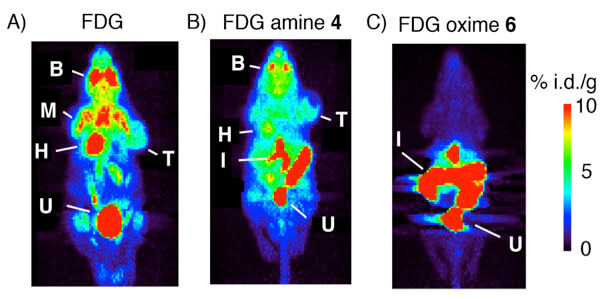 PET imaging using 18F-FDG
