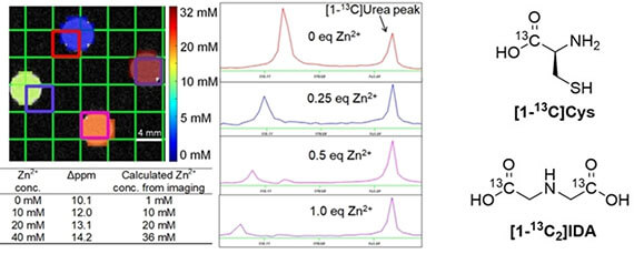 Amino acid-derived sensors for specific Zn2+ detection using hyperpolarized 13C magnetic resonance spectroscopy